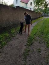 Šikana paničky na pravidelné procházce