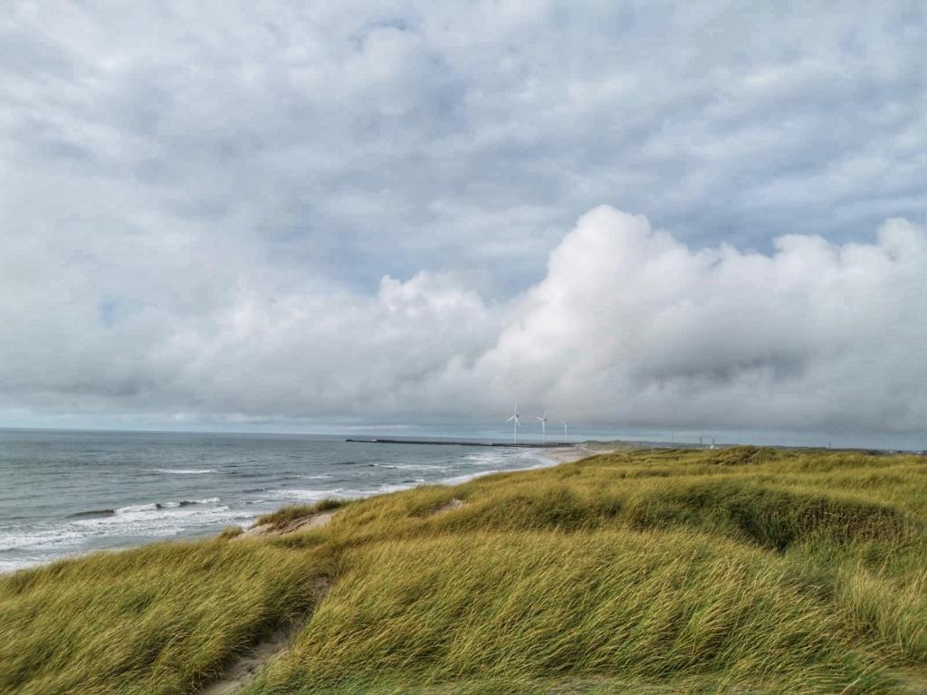 Po dánských dunách 118