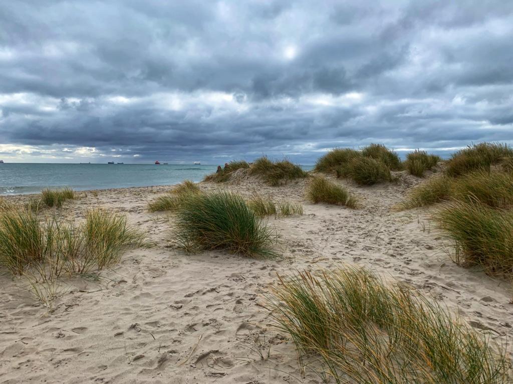 Po dánských dunách 18