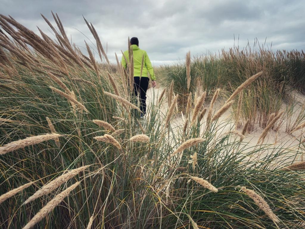 Po dánských dunách 19