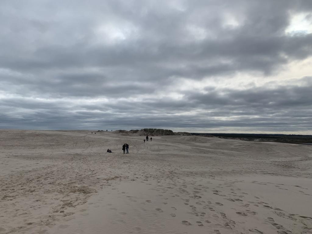 Po dánských dunách 23